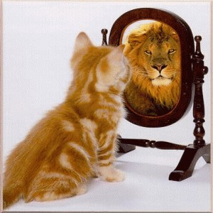 Looking In The Mirror Lion